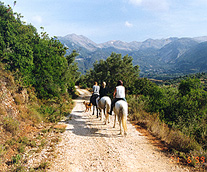 horse-riding in the mmountains